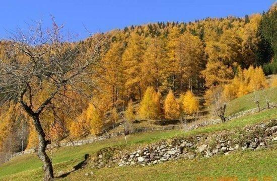 heiserhof-racines-val-giovo-south-tyrol-17-2