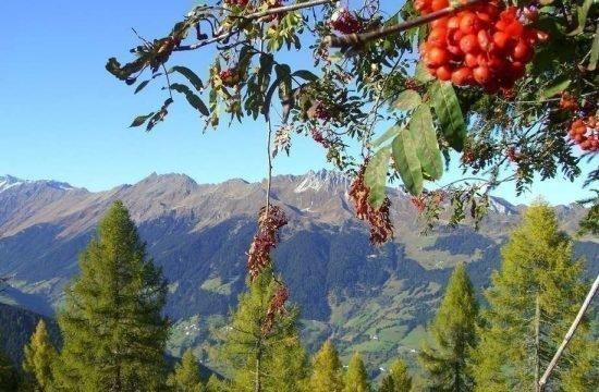 heiserhof-racines-val-giovo-south-tyrol-18-2