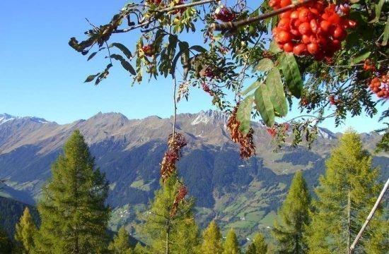 vacanza-sul-maso-racines-alto-adige (6)
